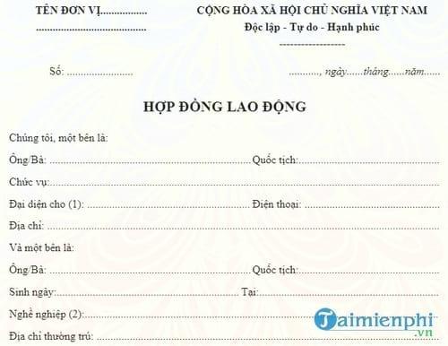 mau hop dong lao dong