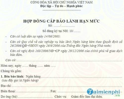 hop dong cap bao lanh han muc