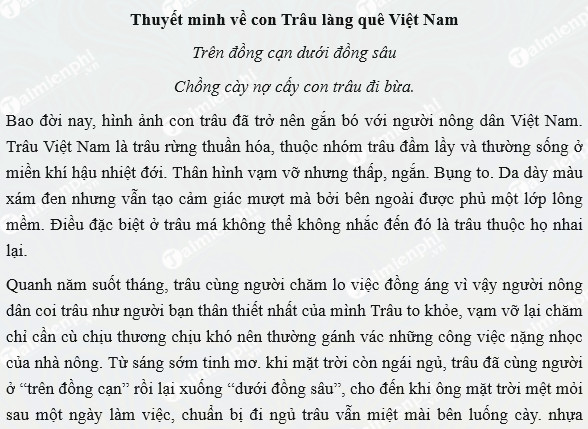 thuyet minh ve con trau