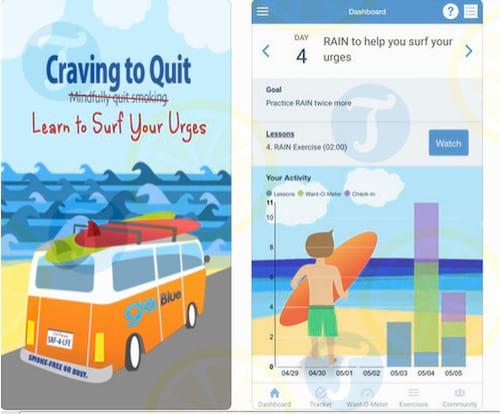 Craving To Quit