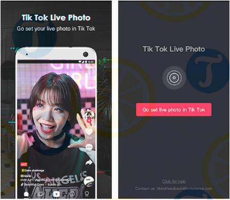 download tik tok live photo