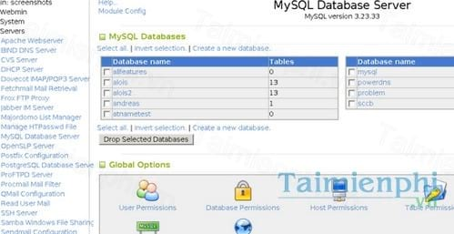 mysql database server